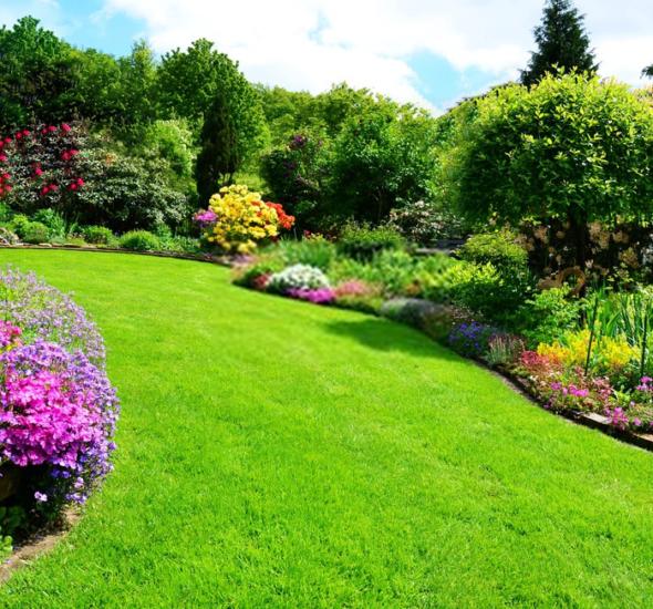 benefits-sod-grass-atlanta-wholesale-sod-suppliers