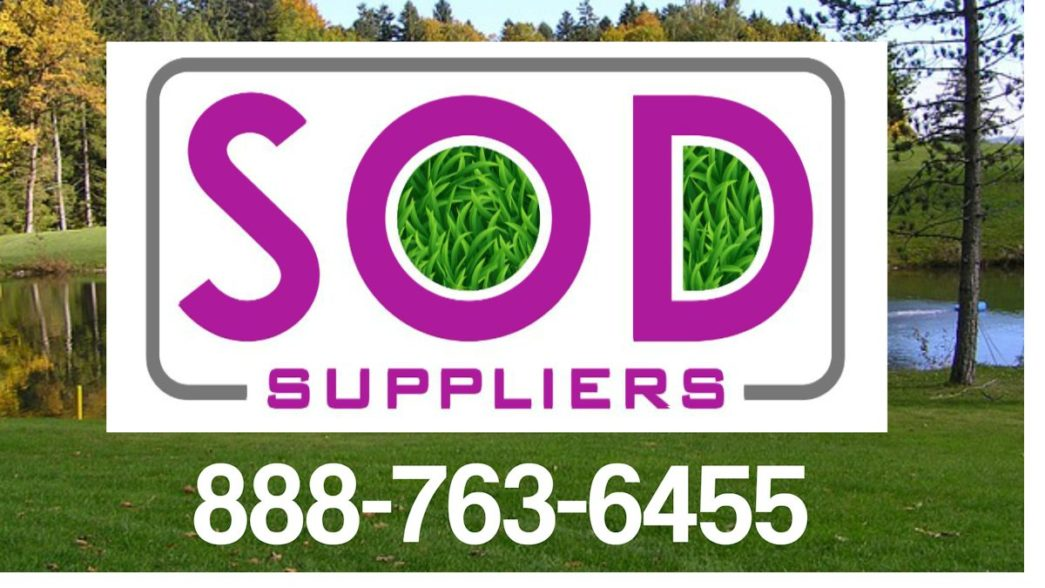 atlanta-sod-suppliers-turf-grass-zoysia-premium-grass