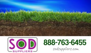 local-lawn-delivery-sod-suppliers-atlanta