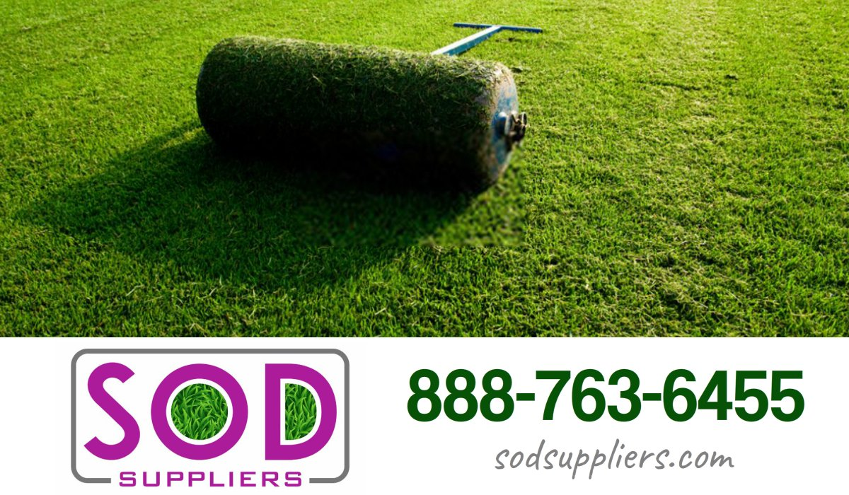 sod-suppliers-stockbridge