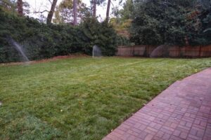 sod-suppliers-roswell-ga