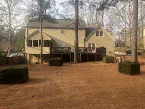 fescue-sod-photo-snellville-georgia-march-21-2021